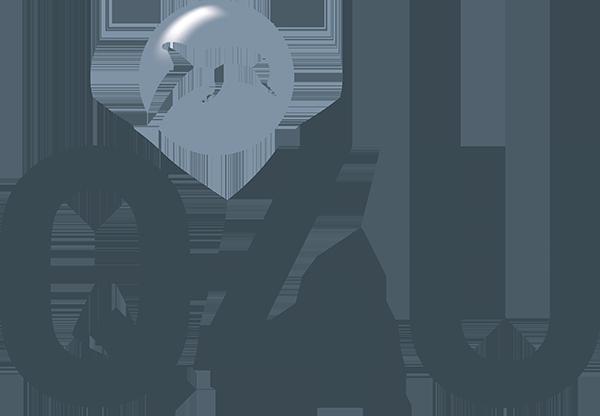 logo-homepage-web-grijs